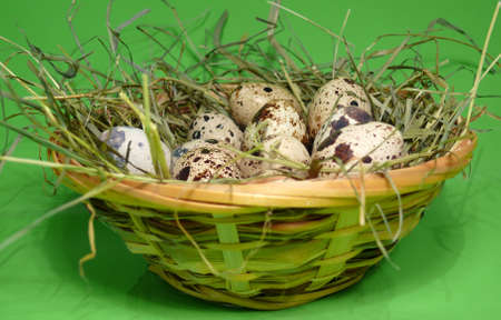 eggs, symbol of fertility and spring Stock Photo - 4151648