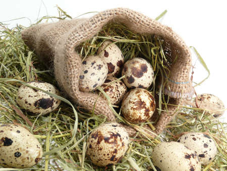 eggs, symbol of fertility and spring Stock Photo