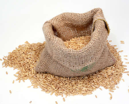 Grain in a bag Standard-Bild