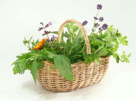 herbsbasket photo