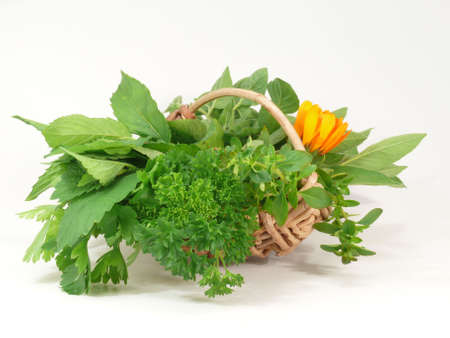 many herbs Stock Photo - 4292286