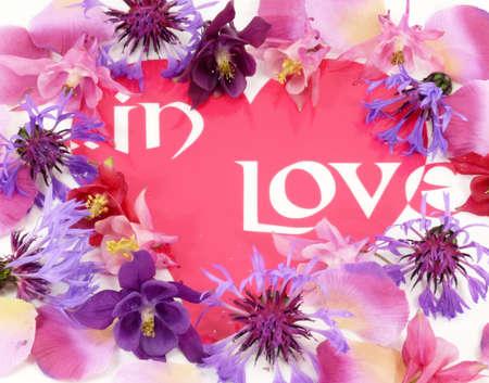love is... photo