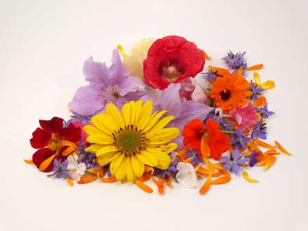 flowerpower: FlowerPower