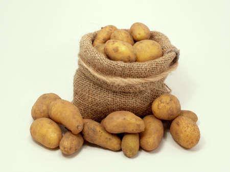 constitute: Potatoes in the Bag