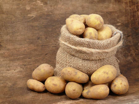 Potatoes_fresh from the field photo
