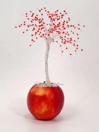 Wire apple  tree Standard-Bild