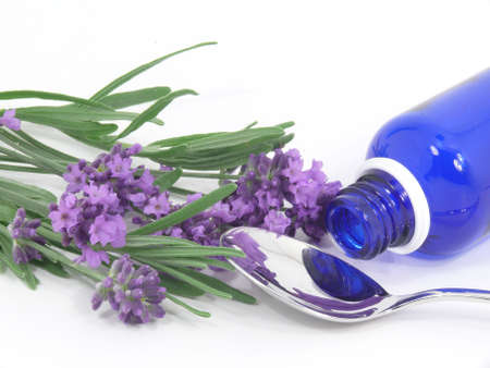 lavender homeopathy photo