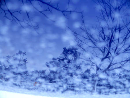 blue Winter scene photo