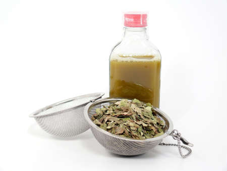 Naturopathy, dried birch leaves and birch juice press photo