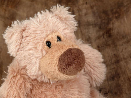 Teddy Bear Stock Photo - 9022746