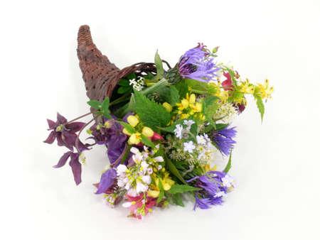 Spring Flowers in horn of plenty Stock Photo - 9544318