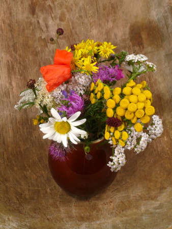 flower selection by the wayside photo