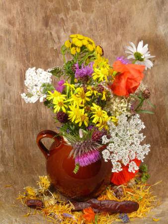 Blume Auswahl auf der Strecke Standard-Bild - 10037001