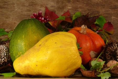 autumn arrangement photo