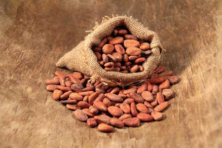 Kakaobohnen Standard-Bild - 11960257