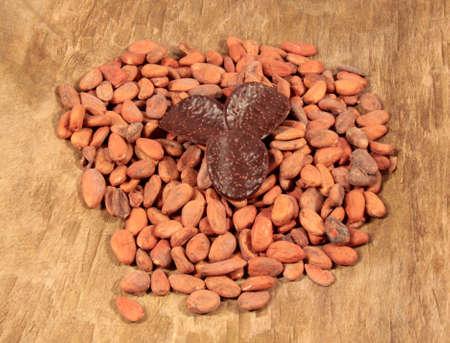 cacao beans: granos de cacao Foto de archivo