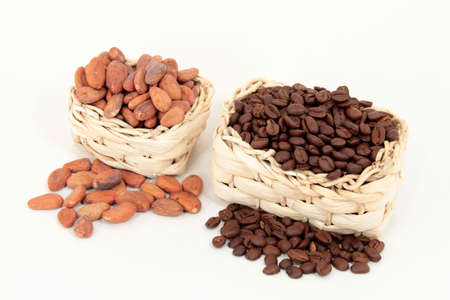 Cocoa vs. coffee Stock Photo - 11986686