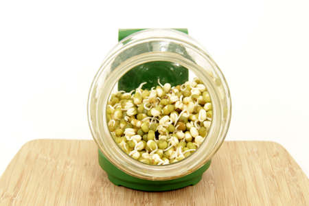 Mung beans Stock Photo - 12192413