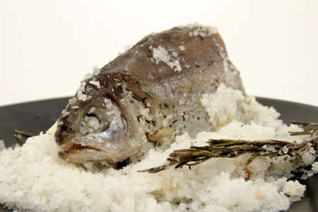 Trout in the salt bed photo