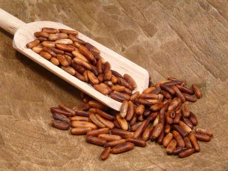 pine nuts: Pine nuts