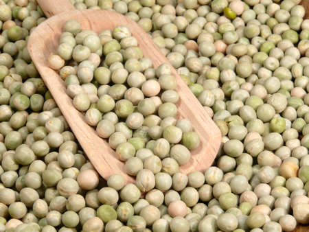 hard garden peas Stock Photo - 13007410