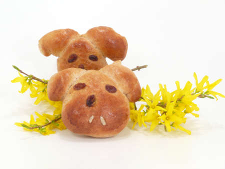 easter bunnys Stock Photo - 13070730