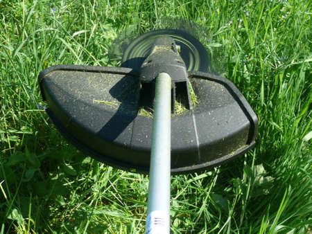 Motorsense mit einem Freischneider im Einsatz Standard-Bild - 13796662