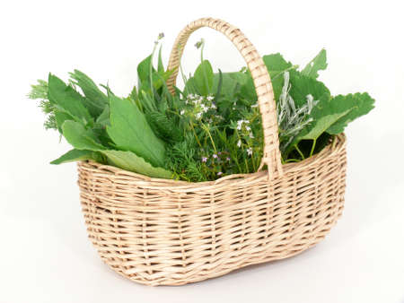 Wild herbs in basket photo