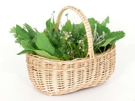 Wild herbs in basket