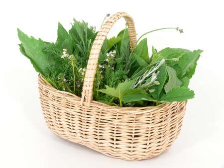 Wild herbs in basket photo