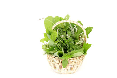 garden herbs in a basket photo