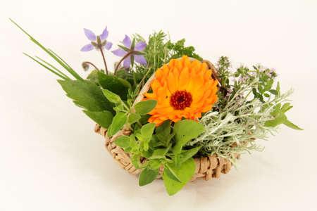 Garden herbs photo