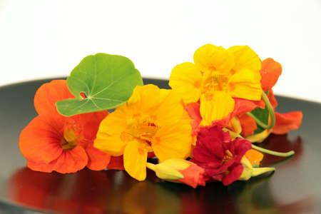 lotus effect: nasturtium flowers Stock Photo