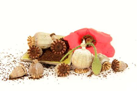 Poppy seeds photo