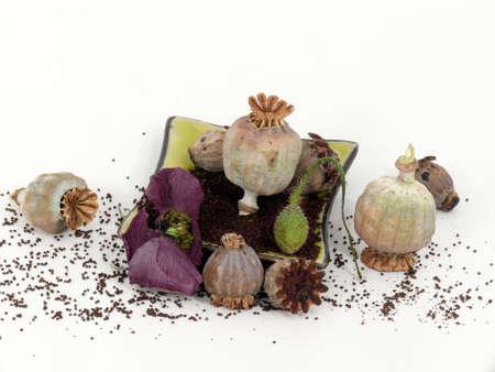 isoliert: Poppy seeds