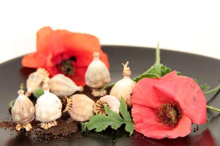 poppy seeds Standard-Bild
