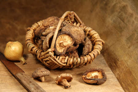 antik: getrocknete Speisepilze