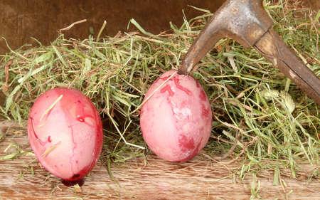 brutal violence against eggs photo