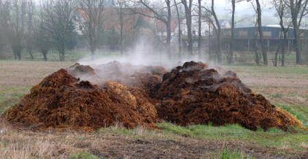 Stapels van mest