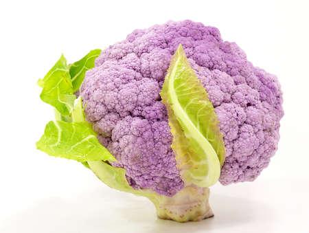 close p: lilac cabbage