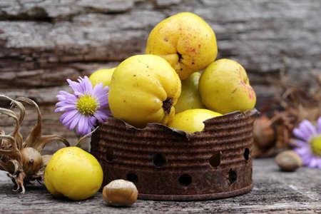 membrillo: still life with little quince