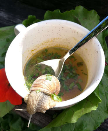 snail soup without slug