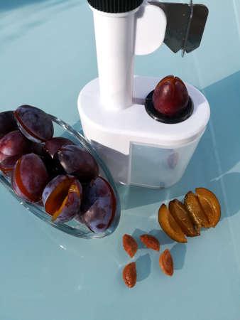 plum pitter in action Standard-Bild