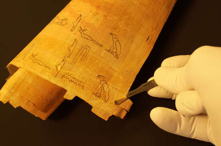 archaeologist: Egyptian hieroglyphs on papyrus analyzing by archaeologist Stock Photo