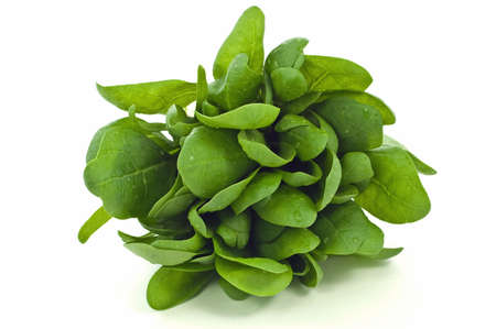 'baby spinach': Bunch of fresh picked baby spinach isolated on white background with room for copy