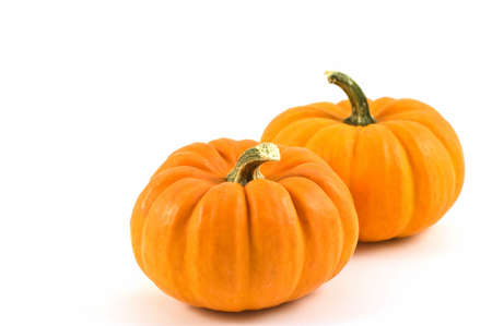 Miniature pumpkins on white background with copy space Stock Photo
