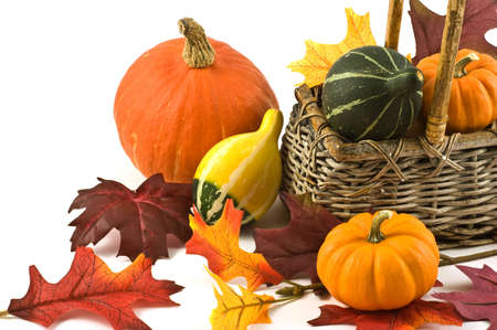 Colorful squash and mini pumpkins with fabric fall leaves for a harvest theme Stock Photo - 8017355