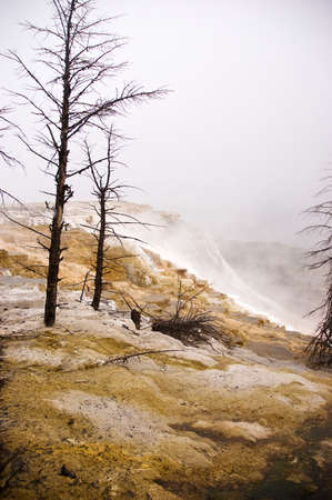 Travertine terraces at Mammoth Hot Springs in Yellowstone National Park, Wyoming Stock Photo