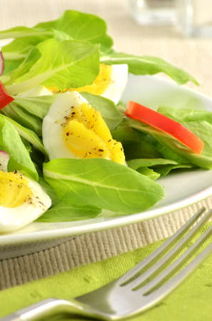 Fresh greens and hard boiled egg with red pepper strips in vertical format Stock Photo