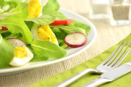hard boiled: Fresh greens and hard boiled egg with radish and red pepper strips